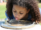 Girl Drinking - Water Fountain